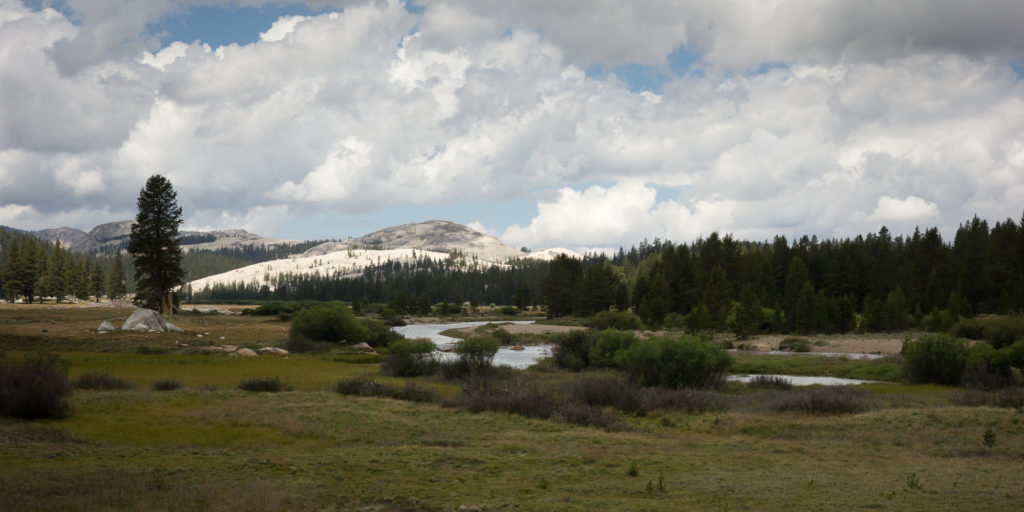 Tuolumne Meadow and view of Lembert Dome